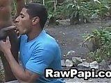 ass, bareback, blow, gay, latino